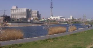 旧中川護岸整備工事(その29)